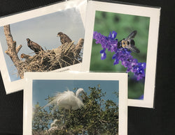 Cards by Cheryl McClure (Assorted Photography)