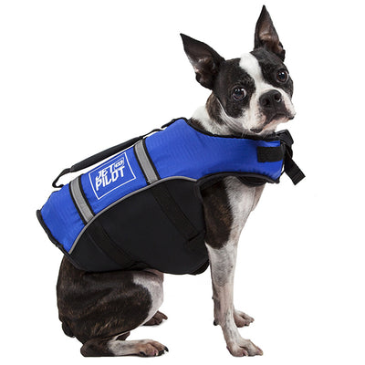 Right side view of the Jetpilot Dog PFD blue colorway.
