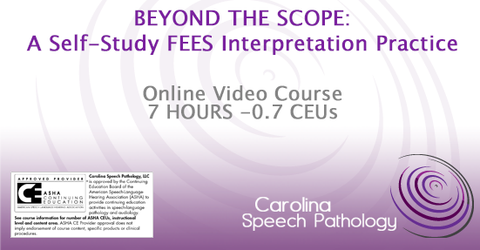 Beyond the Scope: A Self-Study FEES Interpretation Practice