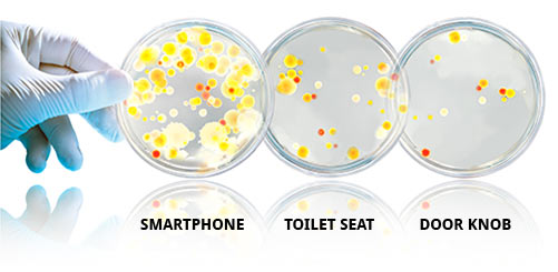 A cell phone has 18x more bacteria than a  public restroom