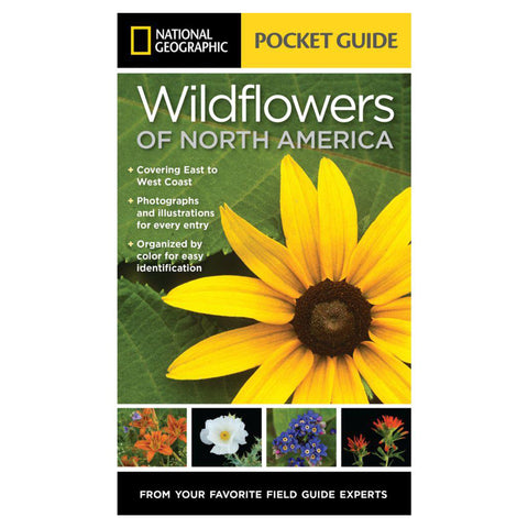 Pocket Guide to Wildflowers of North America