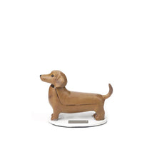 Load image into Gallery viewer, Solar Dachshund Boudewijn