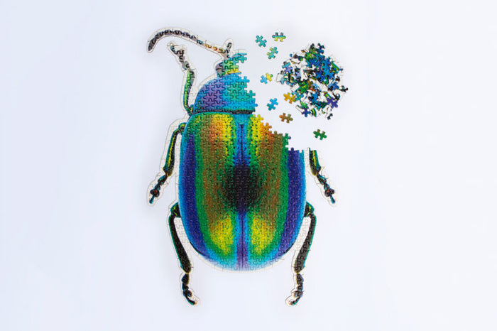 Slow Puzzle Beetle