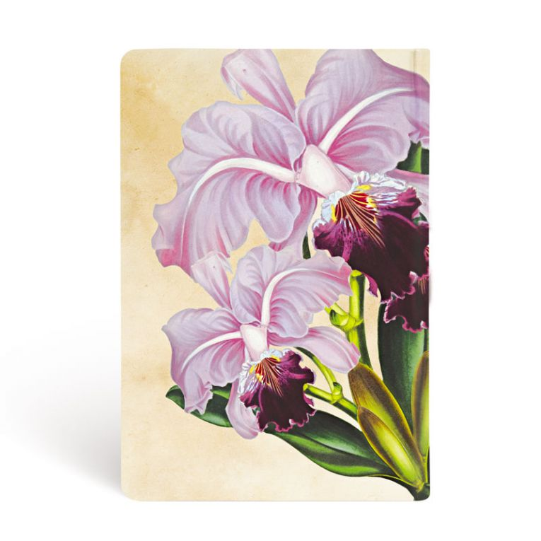 Paperblanks Notebook Mini Blank Brazilian Orchid