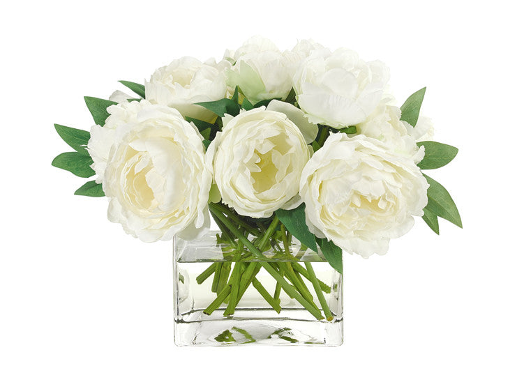 WHITE PEONY IN GLASS CUBE