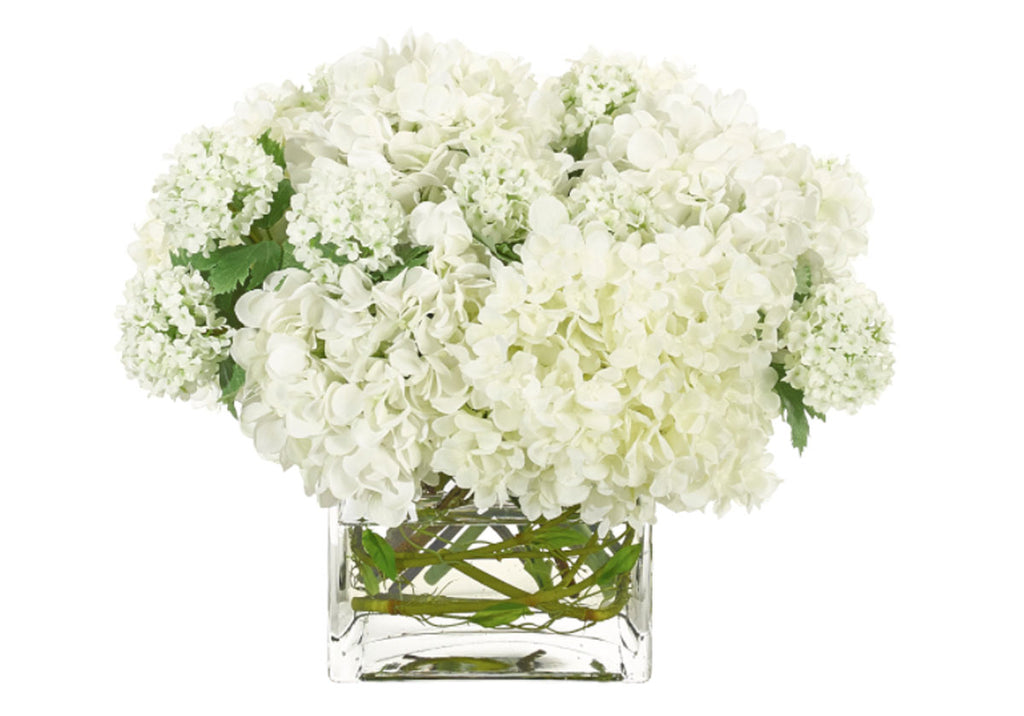 WHITE HYDRANGEA IN GLASS CUBE