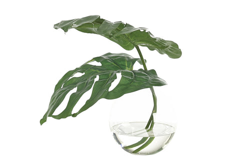 MONSTERA LEAF IN GLASS BUBBLE