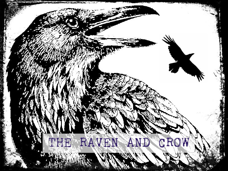 The Raven and Crow