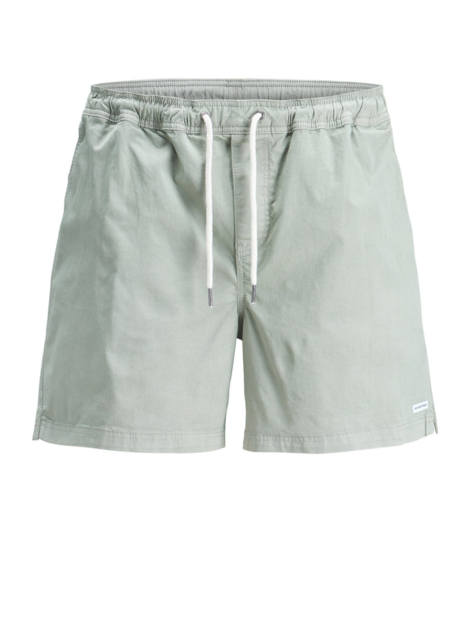 BASIC BEACH SHORTS Iceberg Green
