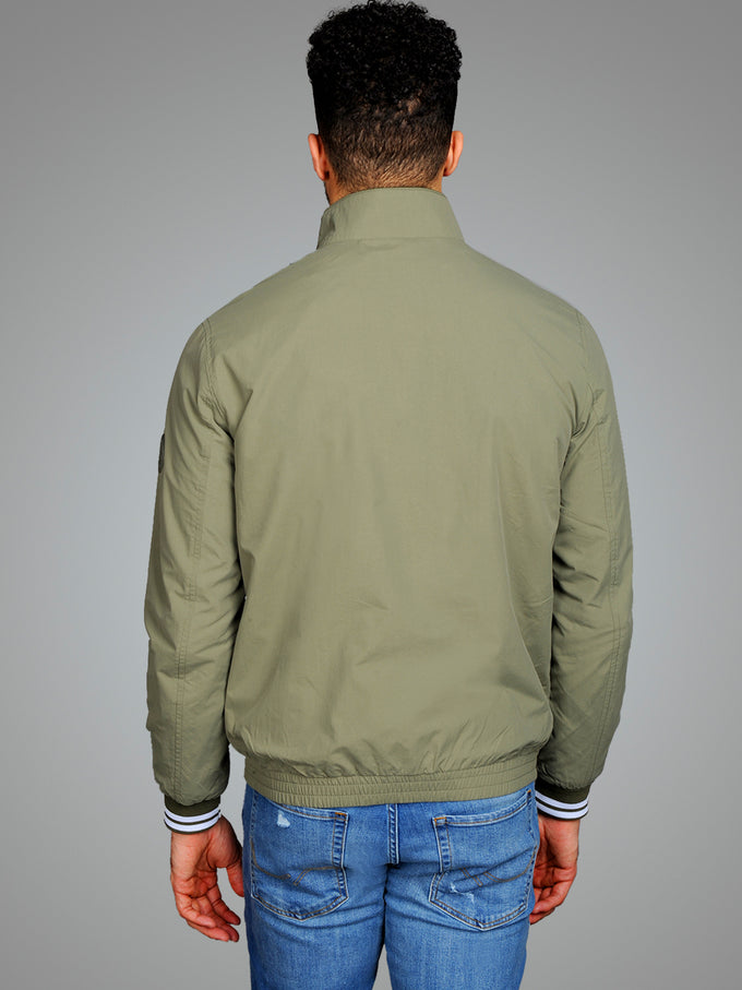 BOMBER JACKET WITH STAND-UP COLLAR Dusty Olive