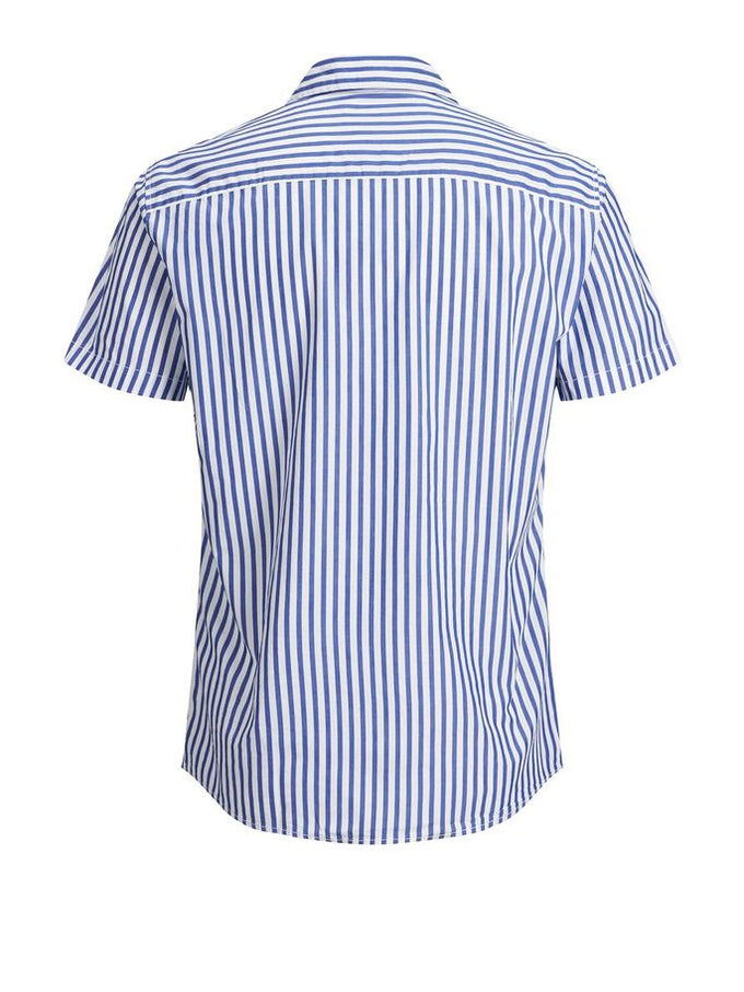 VERTICAL STRIPE SHORT SLEEVE SHIRT Surf the Web