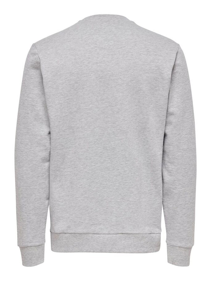 TAU CREWNECK Light Grey Melange