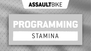 AssaultWOD: AssaultBike Stamina