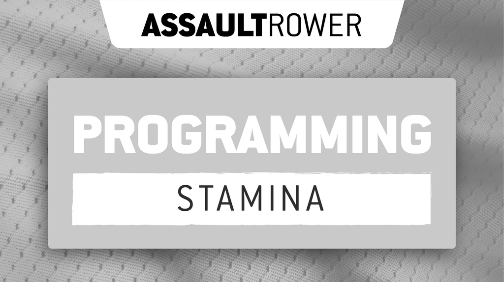 AssaultWOD: AssaultRower Stamina