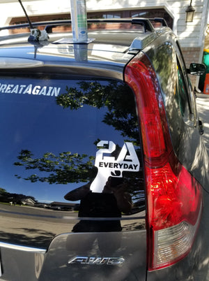 2A EVERYDAY DECAL