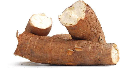 Sola Wood Flowers Cassava Root