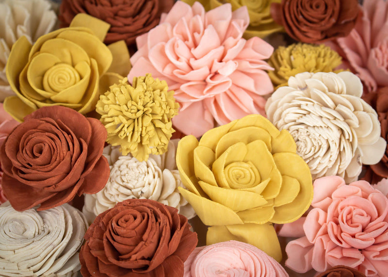 Sola Wood Flowers Dyed flowers ZZZ-Morocco Assortment