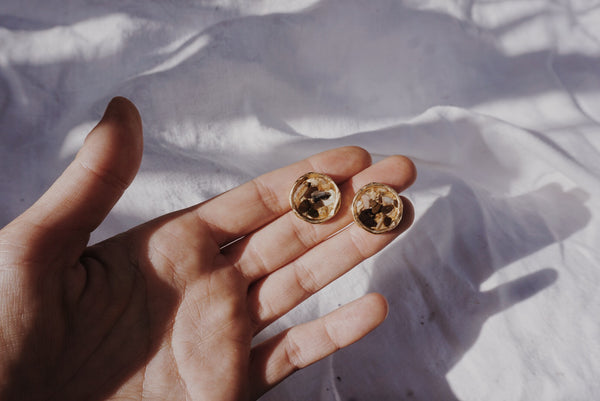 Compass Studs in Shell #8