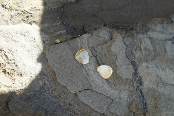 Shell Fragments #2