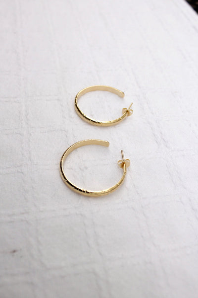 Amazon Hoops in gold and silver