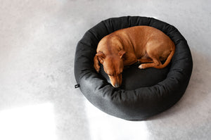 Vackertass Anthracite Halo Bed