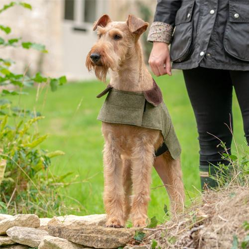 Mutts and Hounds Forest Green Tweed Dog Coat