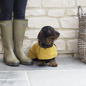 Mutts and Hounds Mustard Waxed Waterproof Dog Coat