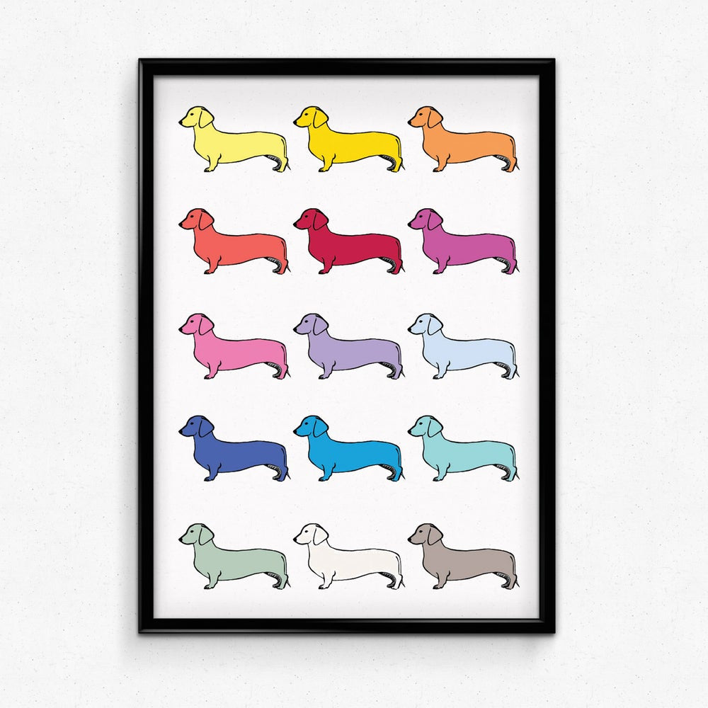 Tabby Rabbit The Dachshund Spectrum Print