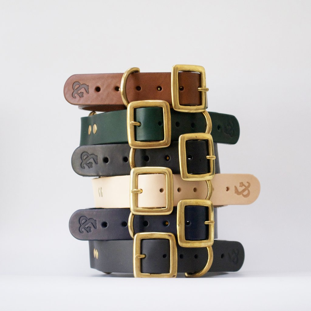 Fetch and Follow Natural Leather Dog Collar