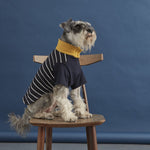 Fetch and Follow Navy and Yellow Striped Dog Sweater