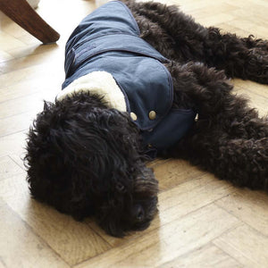 Fetch and Follow Indigo Blue Winter Dog Coat