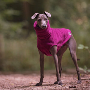 Redhound for Dogs Plum Fleece Jumper