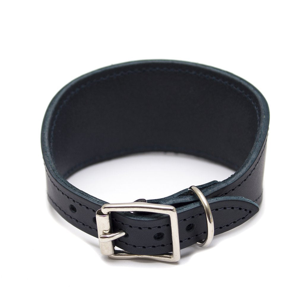 Hiro and Wolf Valour Hound Collar
