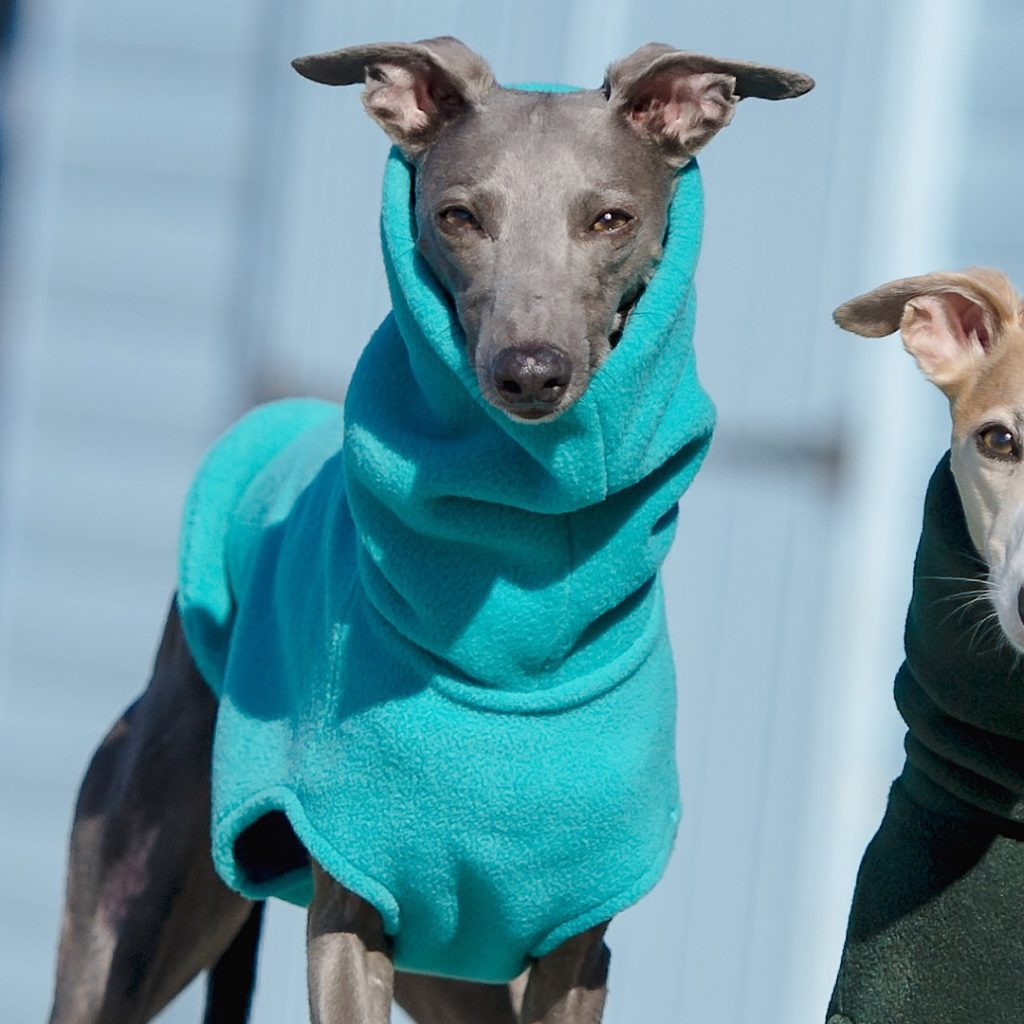 Redhound for Dogs Turquoise Fleece Jumper