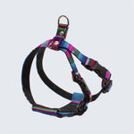 Hiro and Wolf Inca Blue Harness