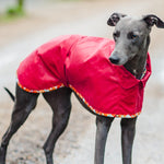 Redhound for Dogs Dartmoor Whippet Waxed Jacket