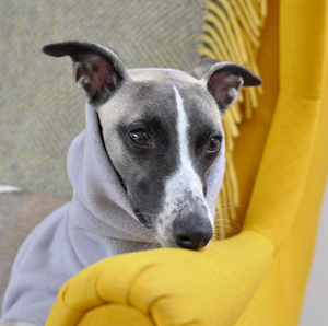Redhound for Dogs Light Grey Fleece Jumper