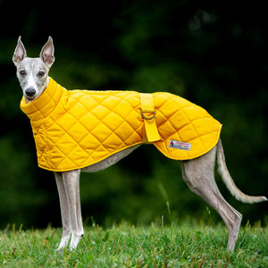 Redhound for Dogs Surrey Washable Yellow Hound Coat