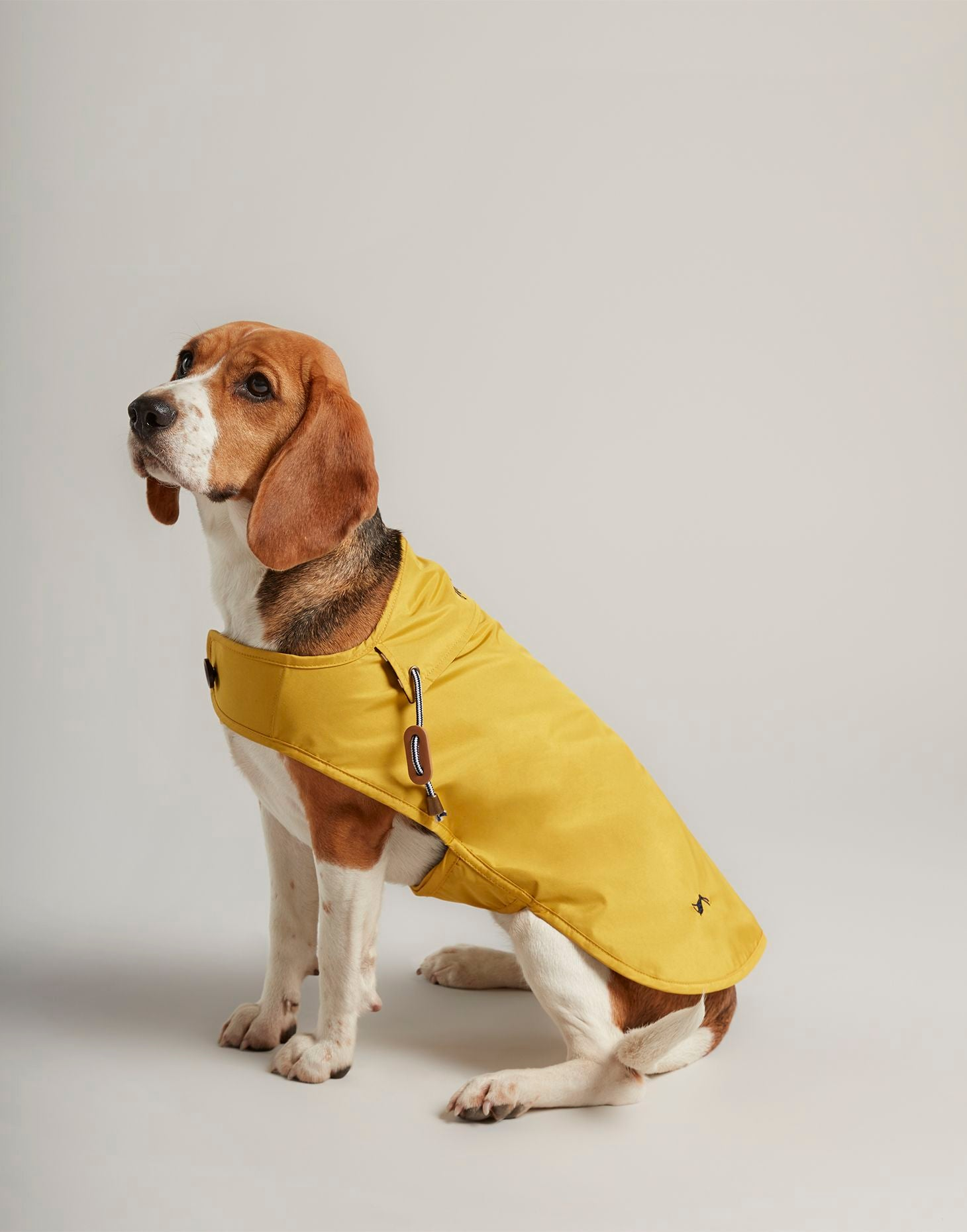 Joules Yellow Rain Jacket