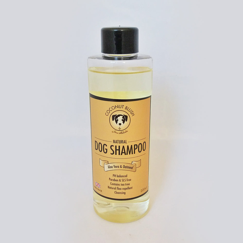 Coconut Blush Conditioning Shampoo