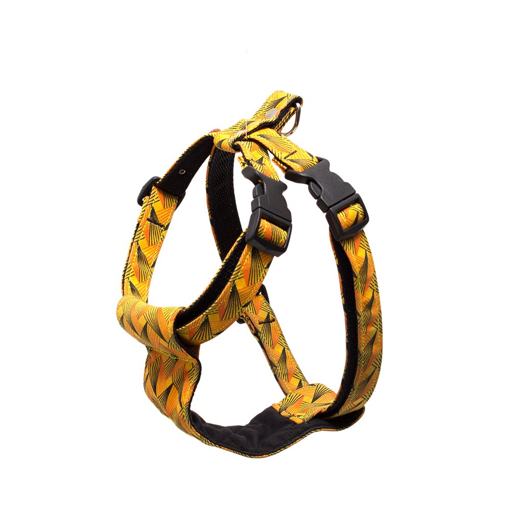 Hiro and Wolf Fireworks Dog Harness