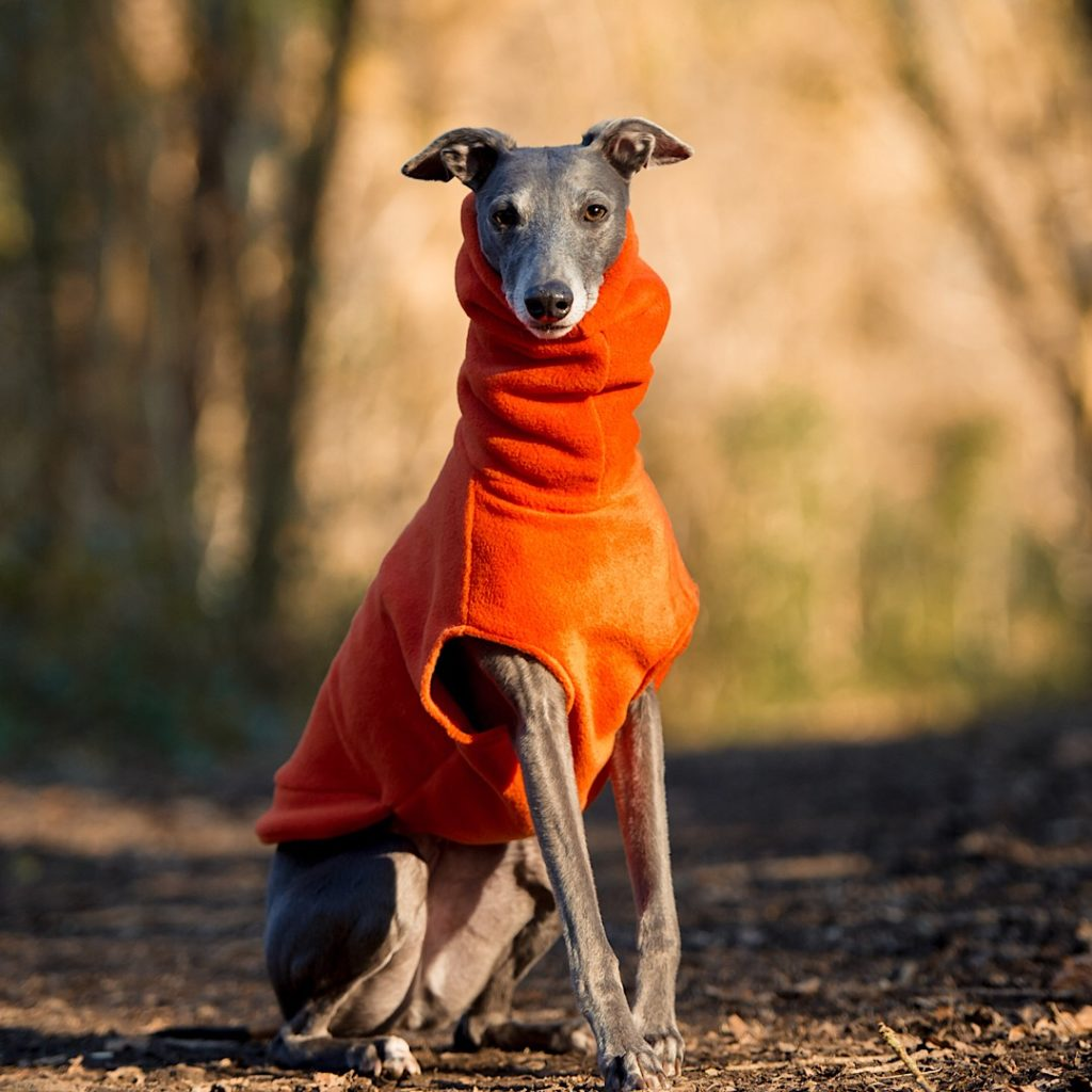 Redhound for Dogs Orange Fleece Jumper