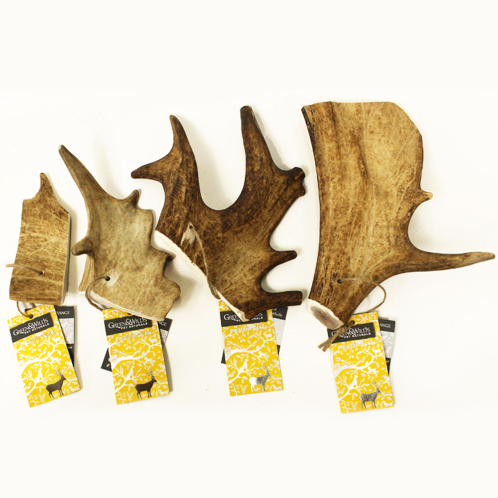 Green and Wild's Fallow Antler Chews