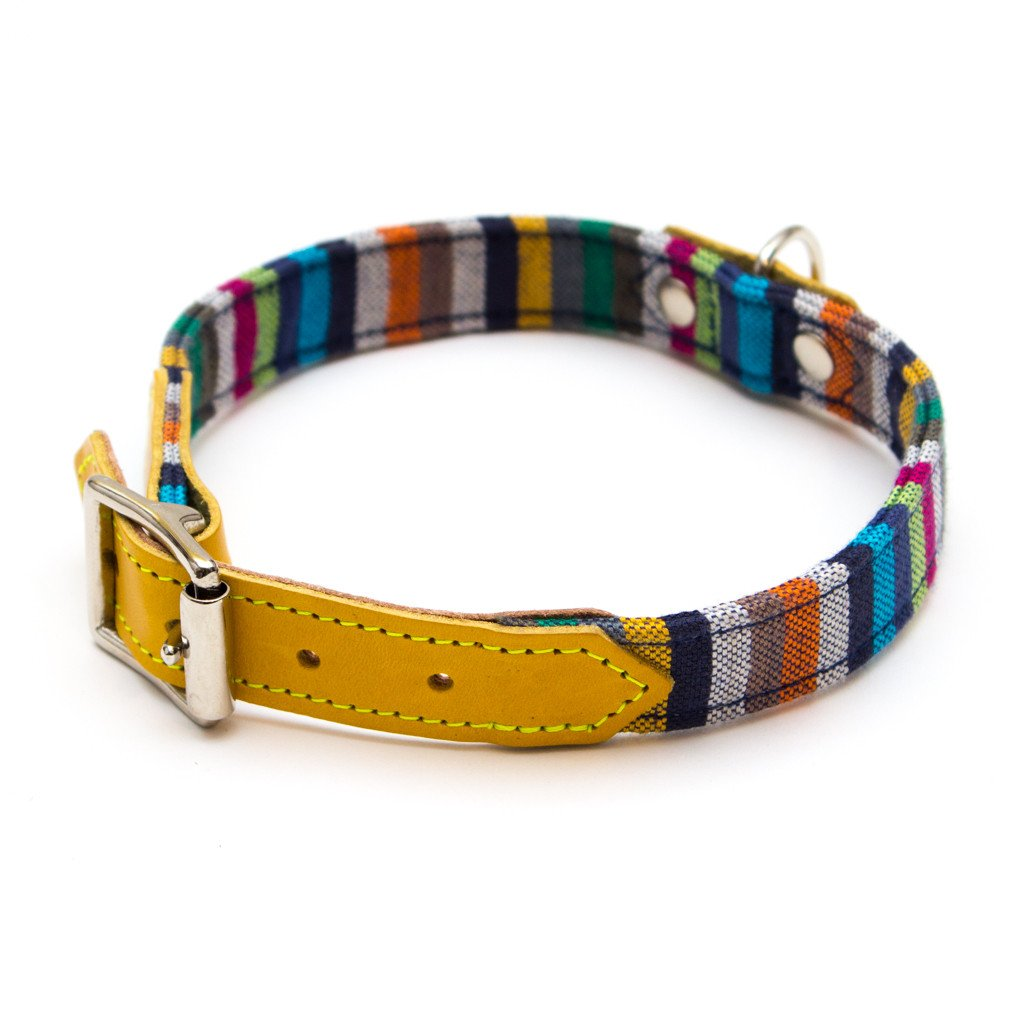 Hiro and Wolf Kikoy Dog Collar