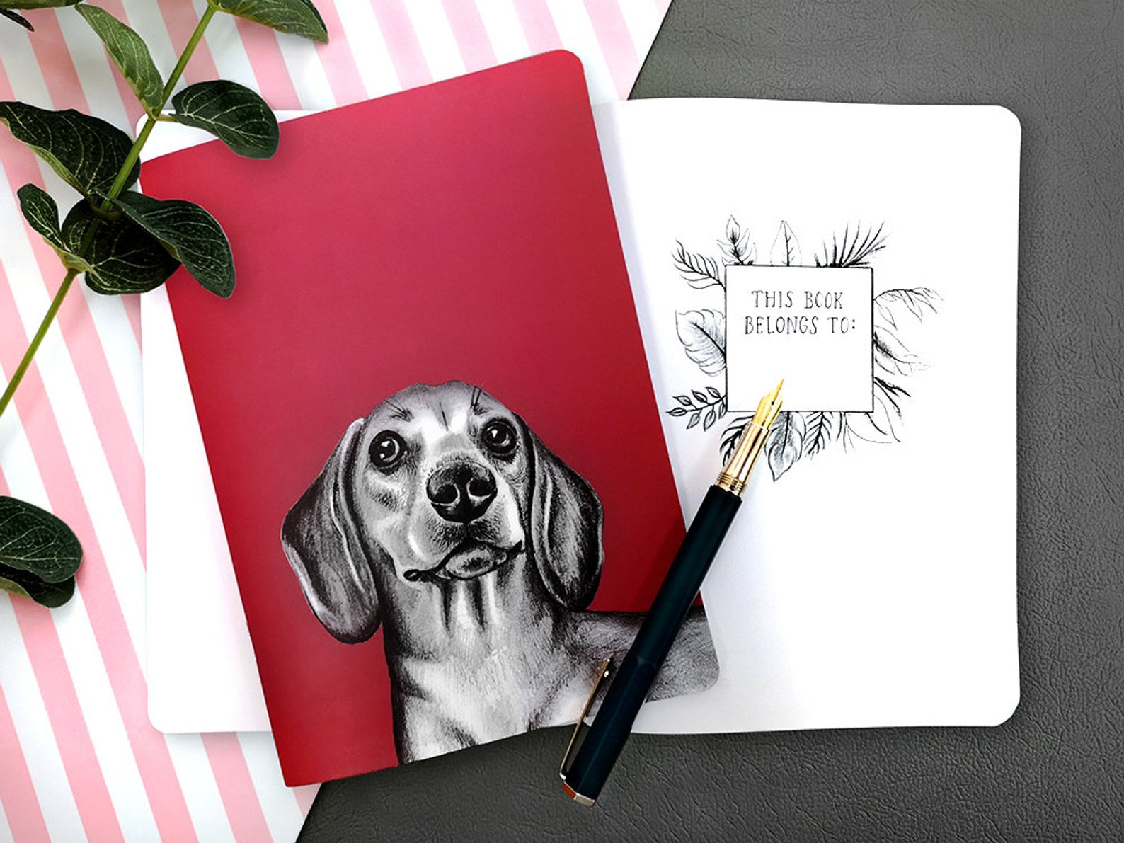 Beth Goodwin Illustrator Dachshund Notebook