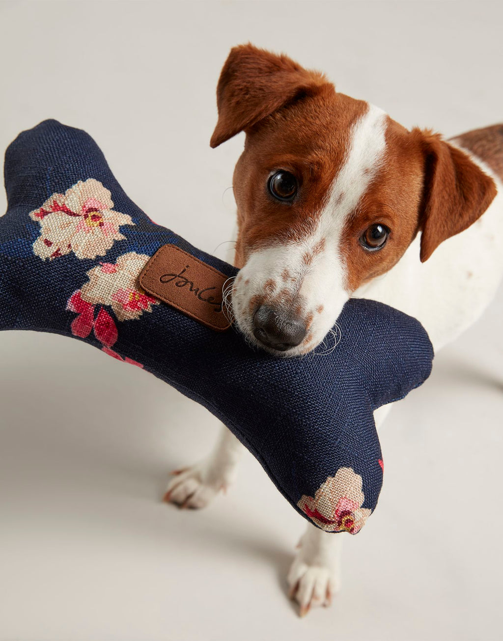 Joules Floral Plush Bone