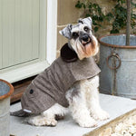 Mutts and Hounds Herringbone Tweed Dog Coat