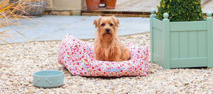 Mutts and Hounds Posie Cotton & Chambray Stripe Boxy Dog Bed