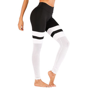 Active Wear Fitness Leggings