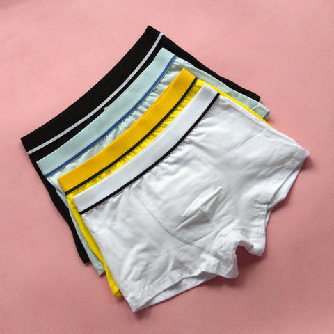 4 Pcs/lot Cotton Teenager Boys Underwear, Boys Underwear, Stylenol- Stylenol
